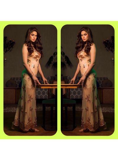Golden Shimmer See through Dress